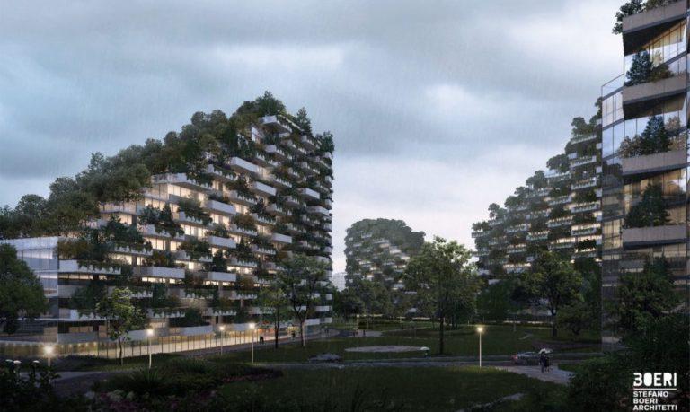 ville forêt